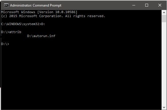 CMD (Command Prompt)