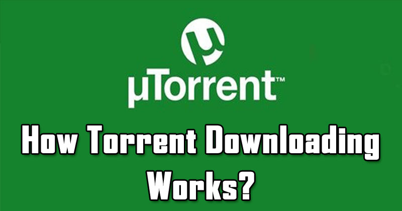 What Are Torrents? How Does Torrent Downloading Works?