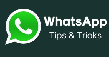 How to Use WhatsApp as Search Engine and Wikipedia