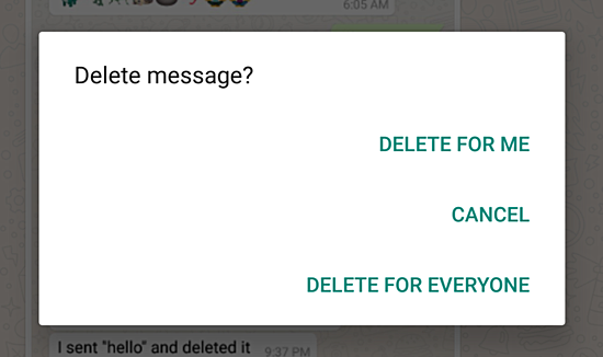 Delete Your Sent Messages On WhatsApp