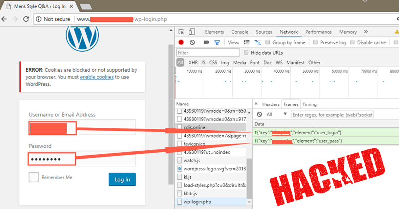 OMG! More Than 2000 WordPress Websites Infected With A Keylogger